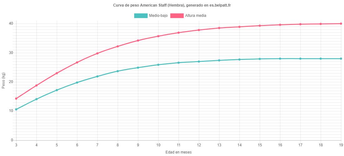 Curva de crecimiento American Staff hembra