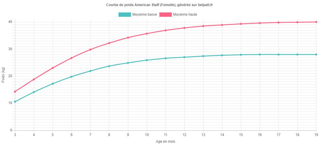 Courbe de croissance American Staff femelle