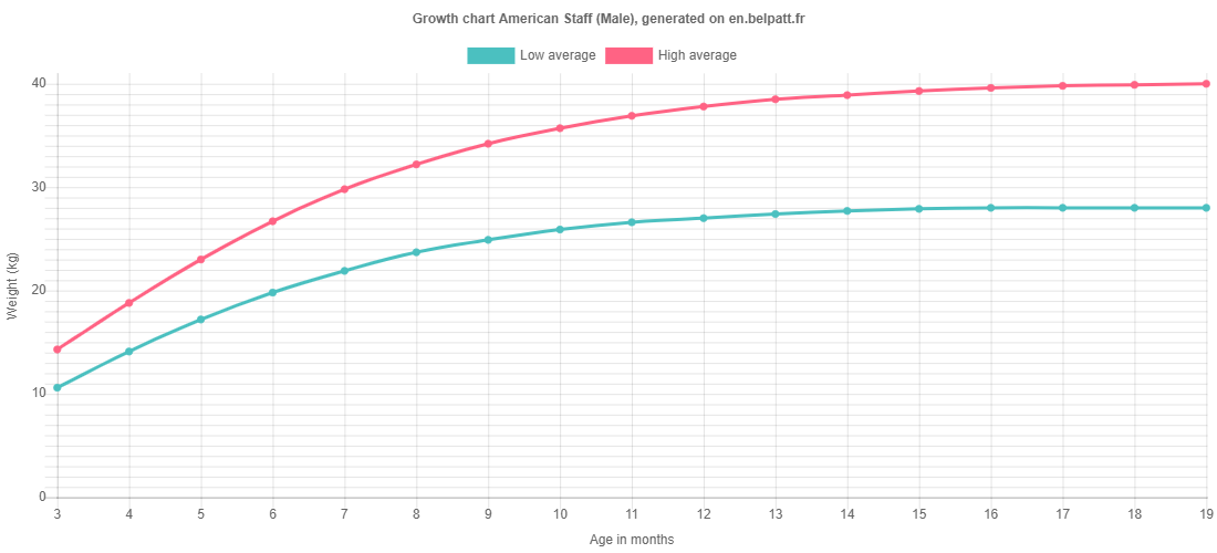 Growth chart American Staff male