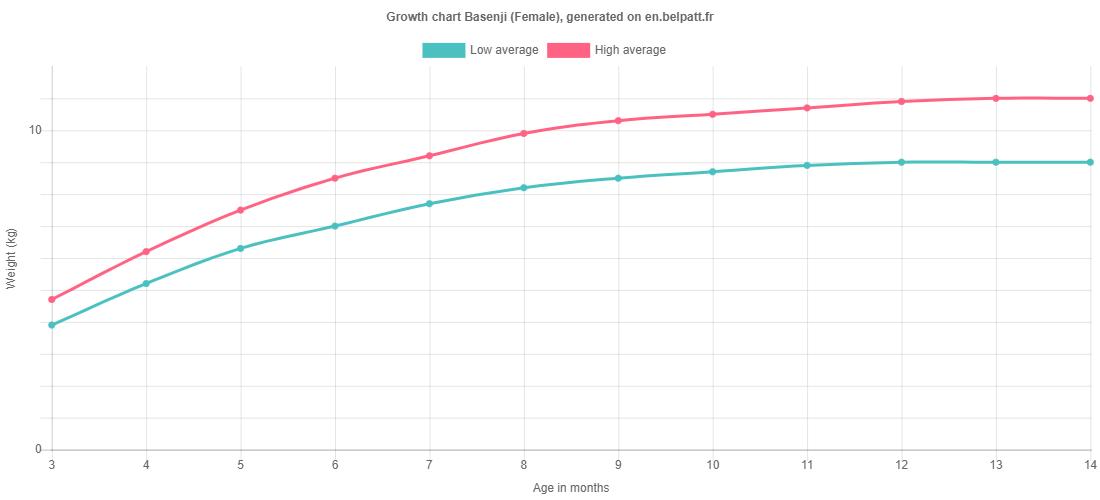 Growth chart Basenji female