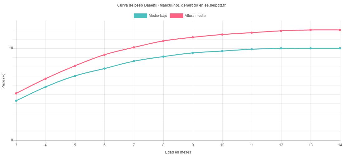 Curva de crecimiento Basenji masculino