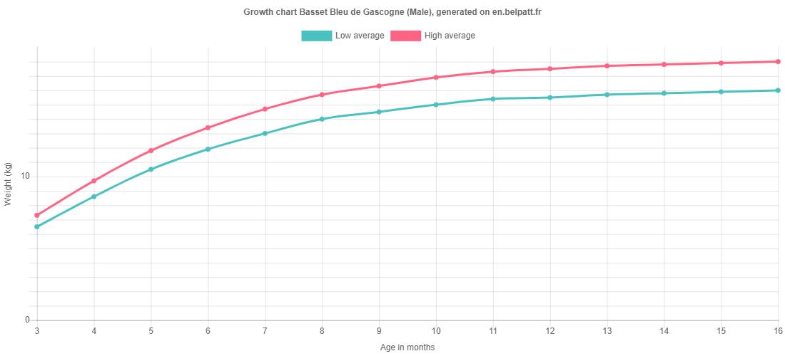 Growth chart Basset Bleu de Gascogne male