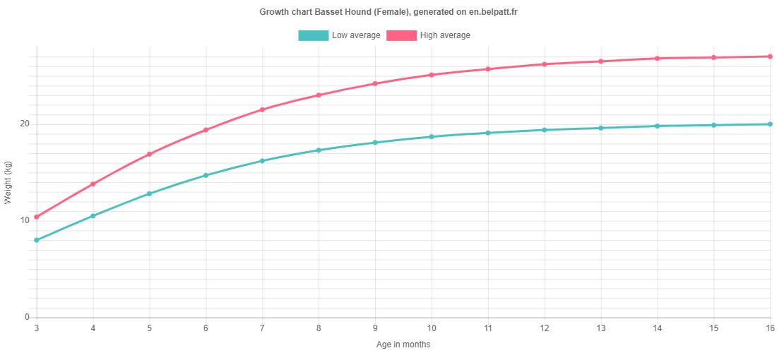Growth chart Basset Hound female