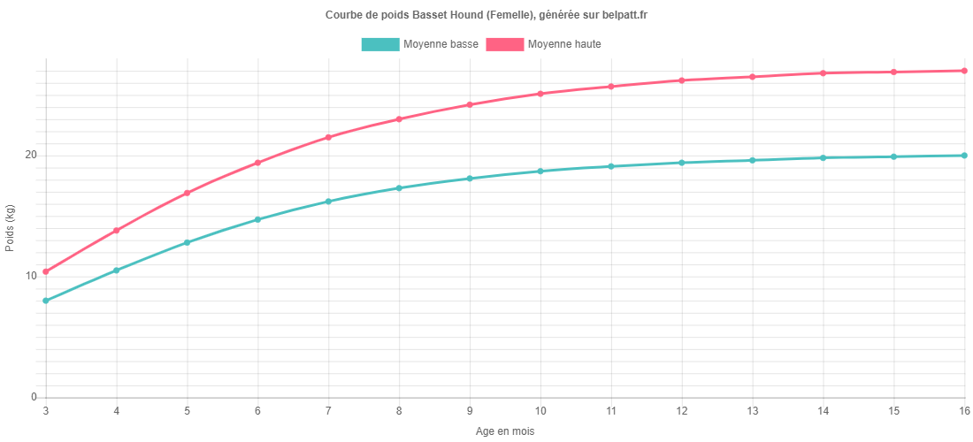 Courbe de croissance Basset Hound femelle