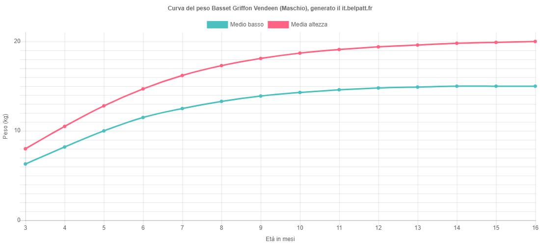 Curva di crescita Basset Griffon Vendeen maschio