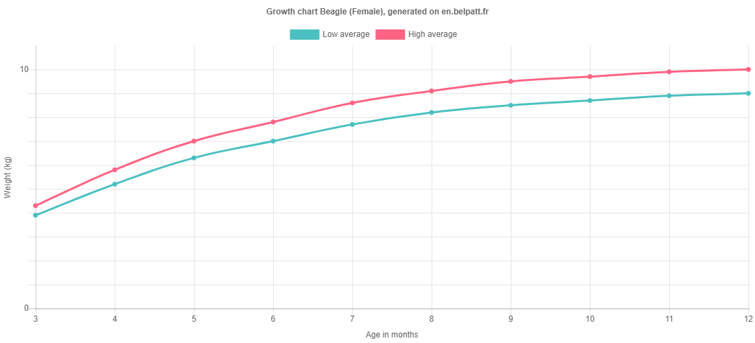 Growth chart Beagle female