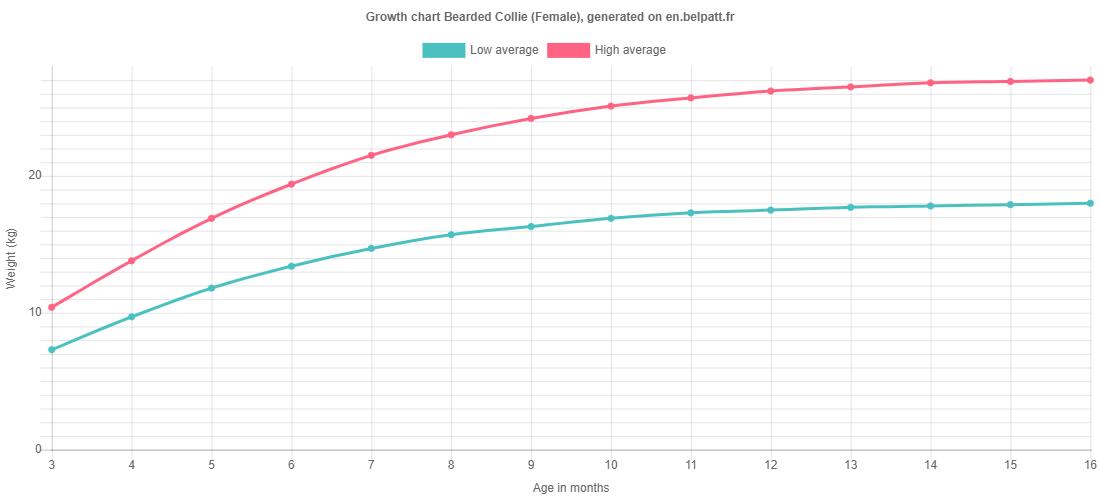 Growth chart Bearded Collie female