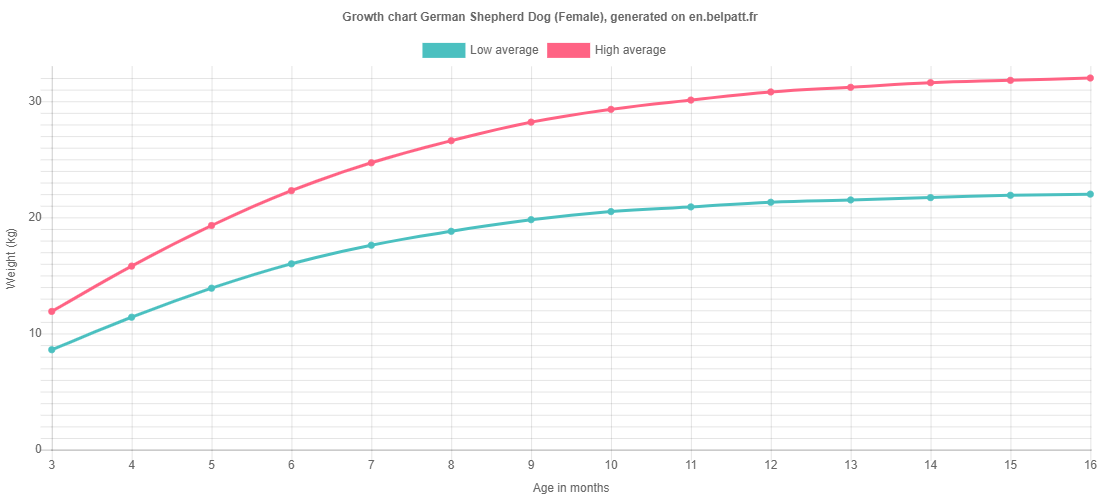 Growth chart German Shepherd Dog female