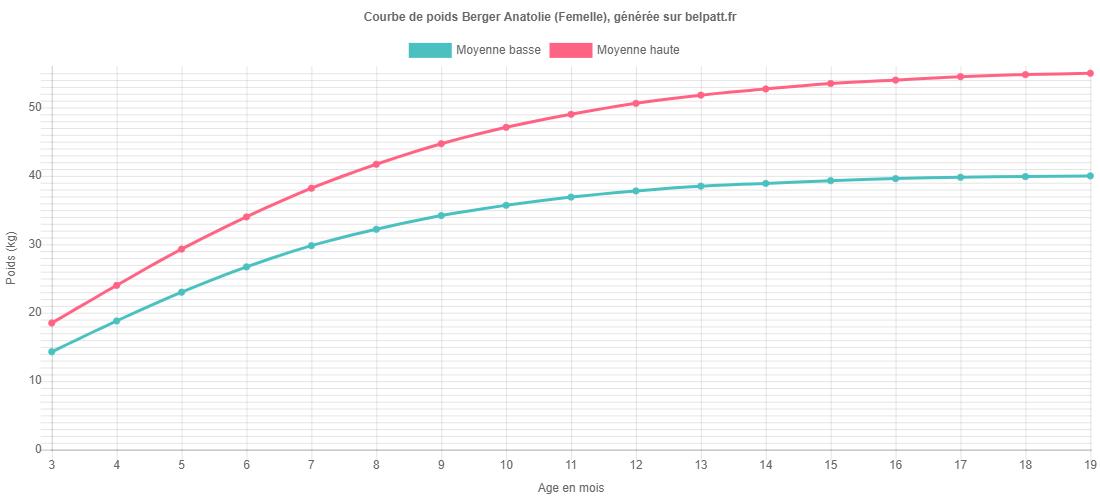 Courbe de croissance Berger Anatolie femelle