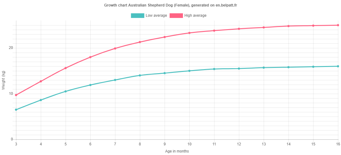 Growth chart Australian Shepherd Dog female