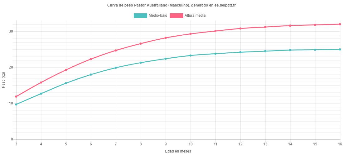 Curva de crecimiento Pastor Australiano masculino