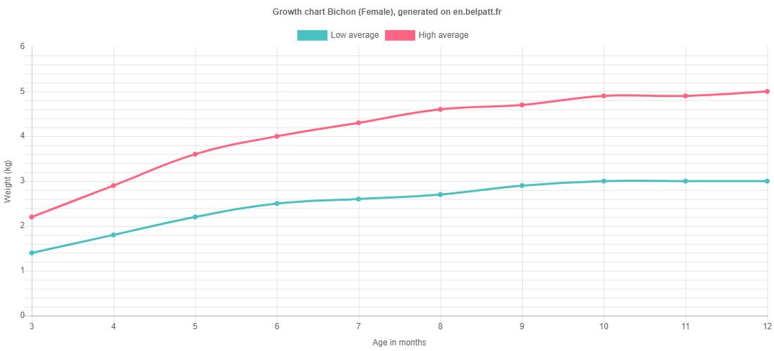 Growth chart Bichon female