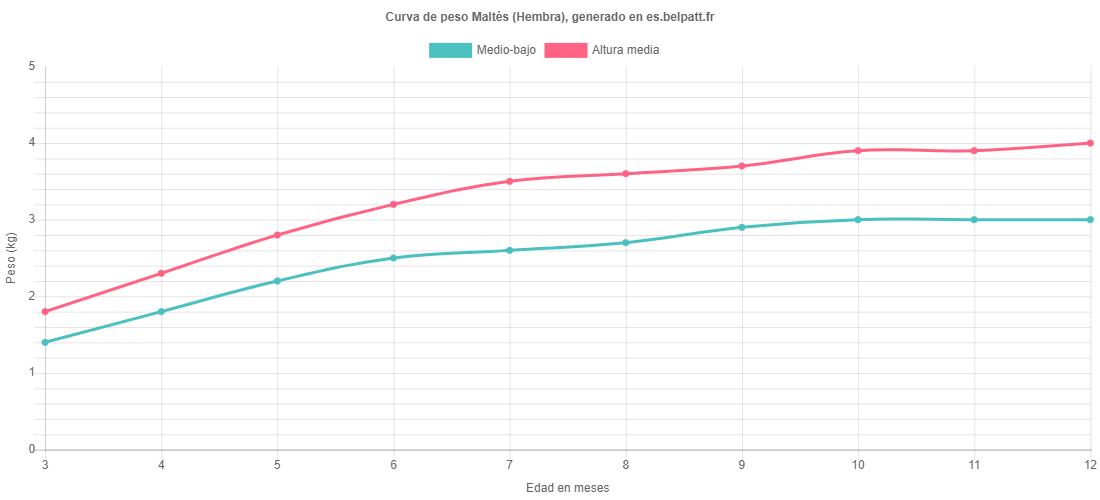 Curva de crecimiento Maltés hembra