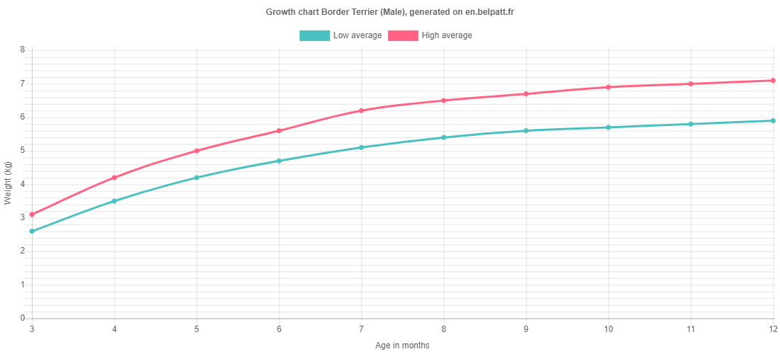 Growth chart Border Terrier male