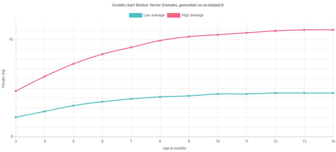 Growth chart Boston Terrier female