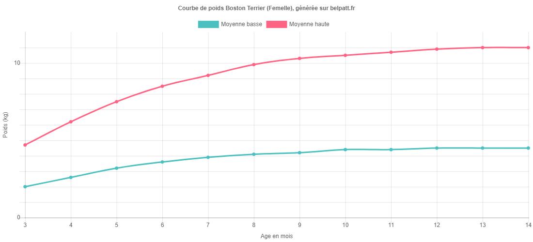 Courbe de croissance Boston Terrier femelle