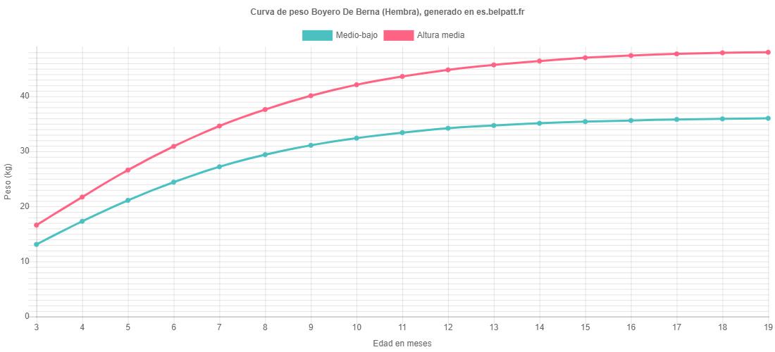 Curva de crecimiento Boyero De Berna hembra
