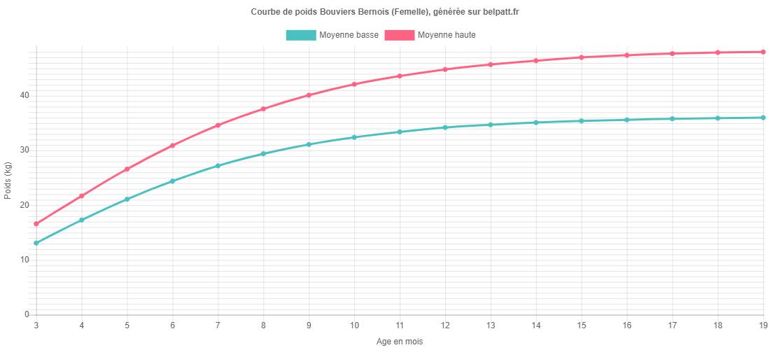 Courbe de croissance Bouviers Bernois femelle