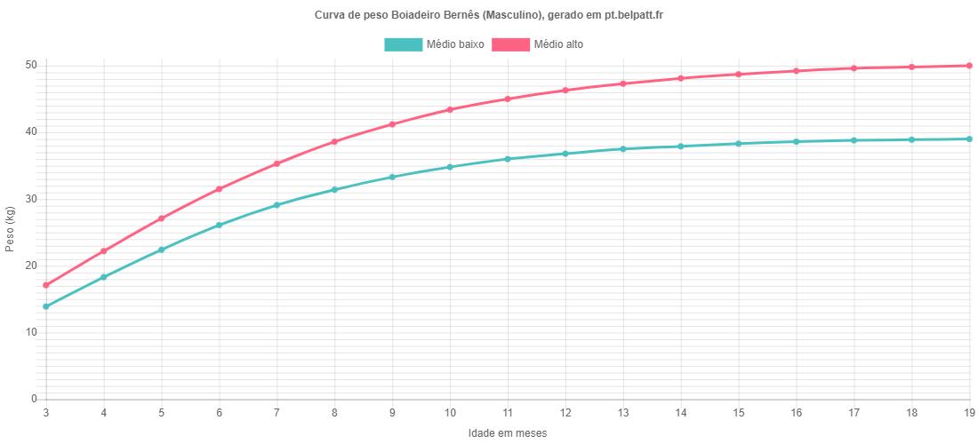 Curva de crescimento Boiadeiro Bernês masculino