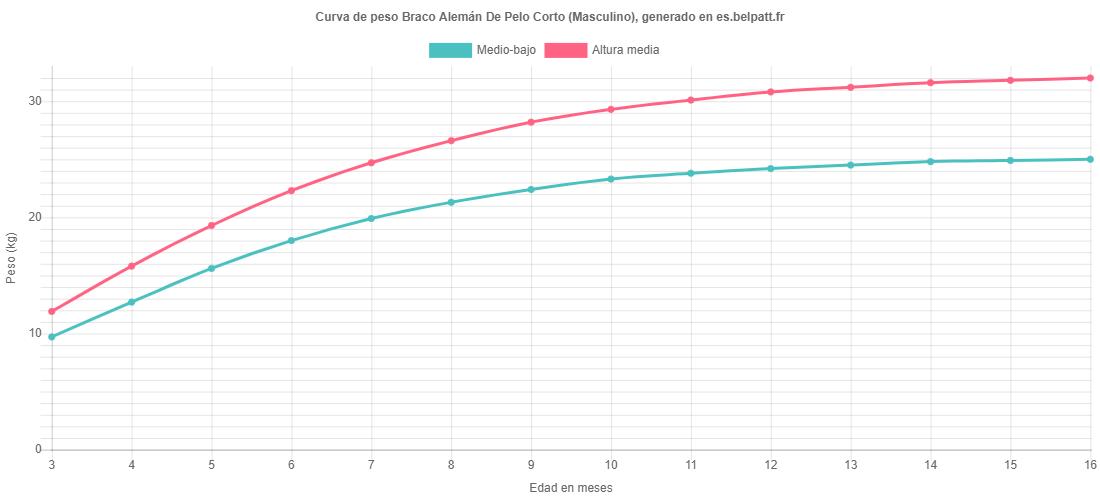 Curva de crecimiento Braco Alemán De Pelo Corto masculino