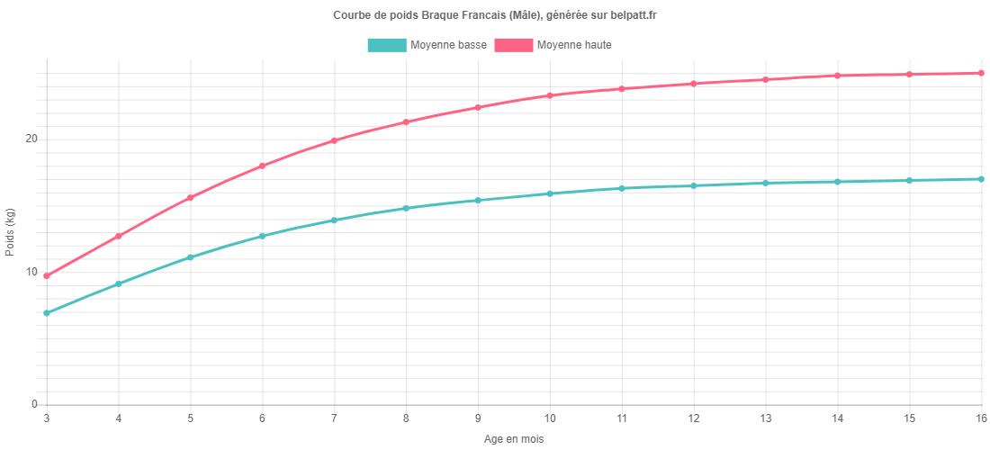 Courbe de croissance Braque Francais male