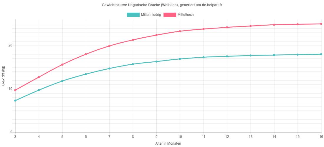 Wachstumskurve Ungarische Bracke weiblich