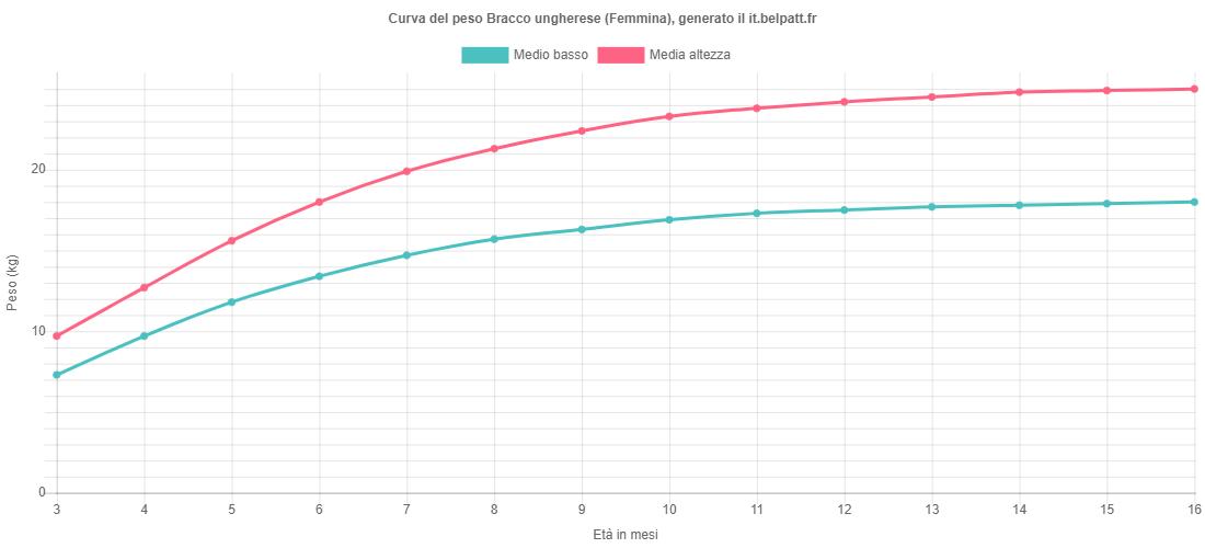 Curva di crescita Bracco ungherese femmina