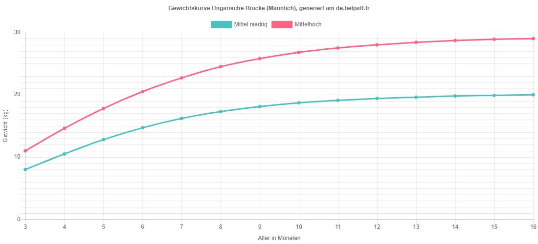 Wachstumskurve Ungarische Bracke männlich