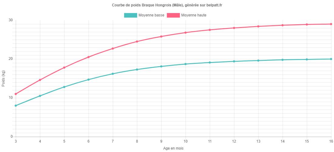 Courbe de croissance Braque Hongrois male