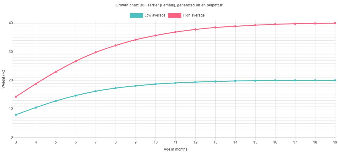 Growth chart Bull Terrier female