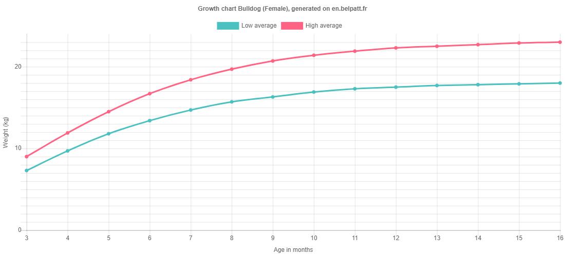 Growth chart Bulldog female