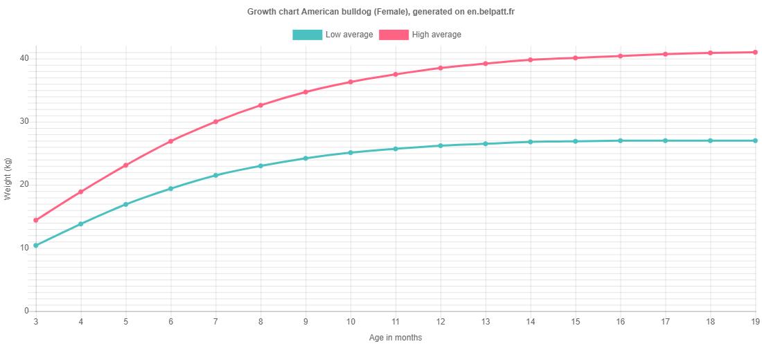 Growth chart American bulldog female