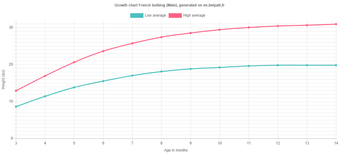 Growth chart French bulldog male