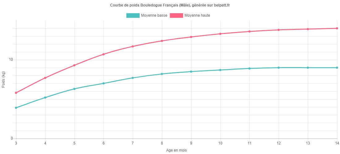 Courbe de croissance Bouledogue Français male