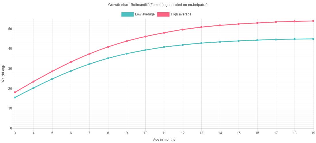 Growth chart Bullmastiff female