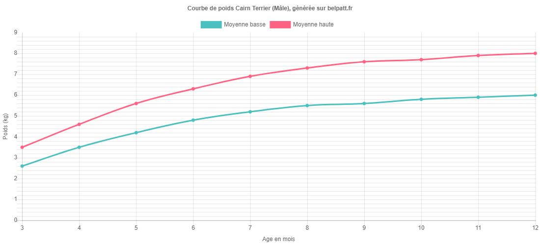 Courbe de croissance Cairn Terrier male