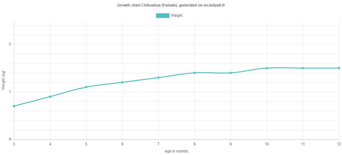 Growth chart Chihuahua female