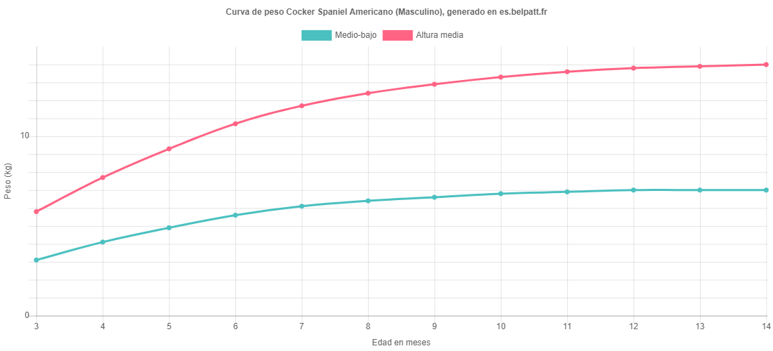 Curva de crecimiento Cocker Spaniel Americano masculino
