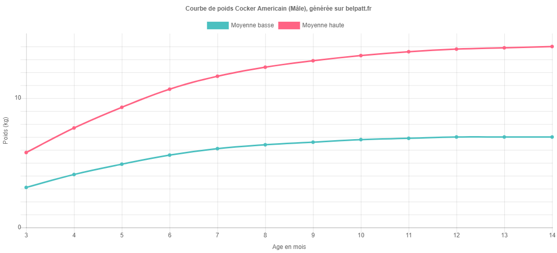 Courbe de croissance Cocker Americain male