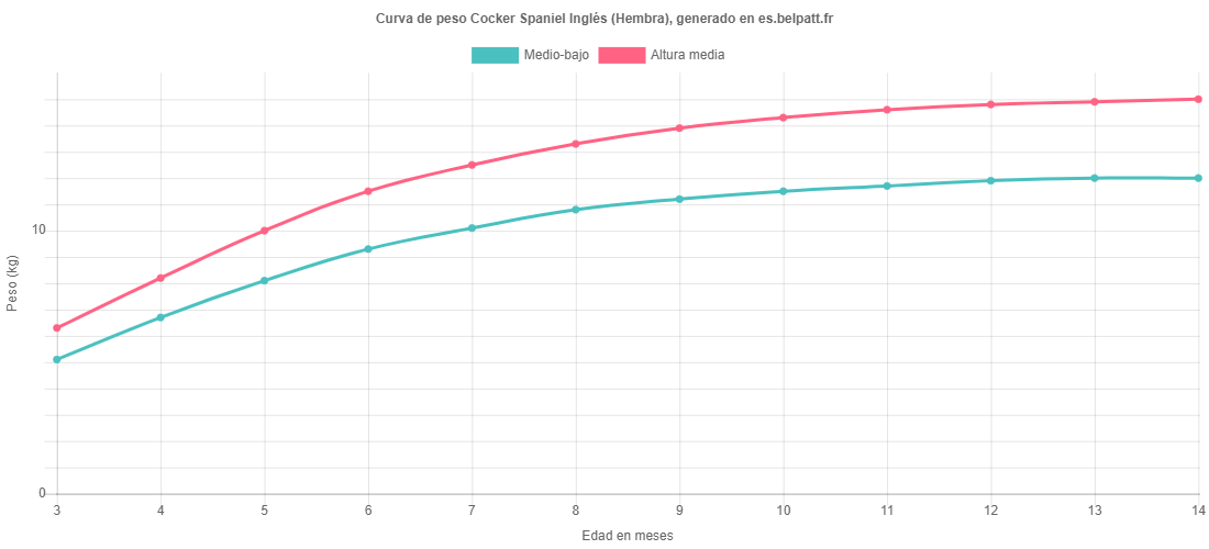Curva de crecimiento Cocker Spaniel Inglés hembra