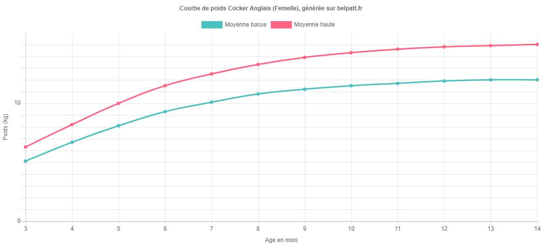 Courbe de croissance Cocker Anglais femelle