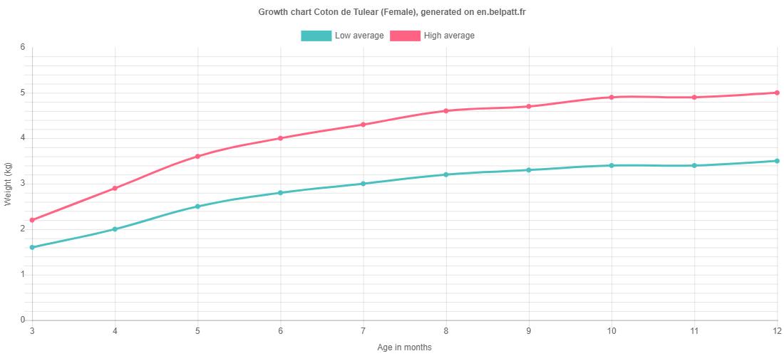 Growth chart Coton de Tulear female