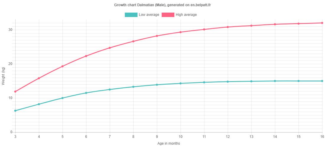 Growth chart Dalmatian male