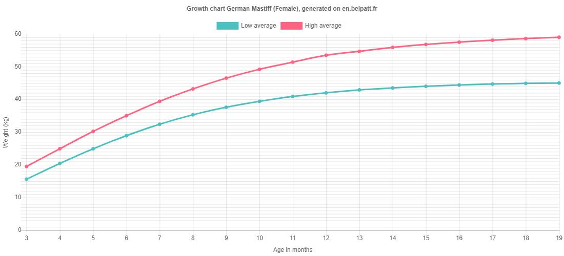Growth chart German Mastiff female
