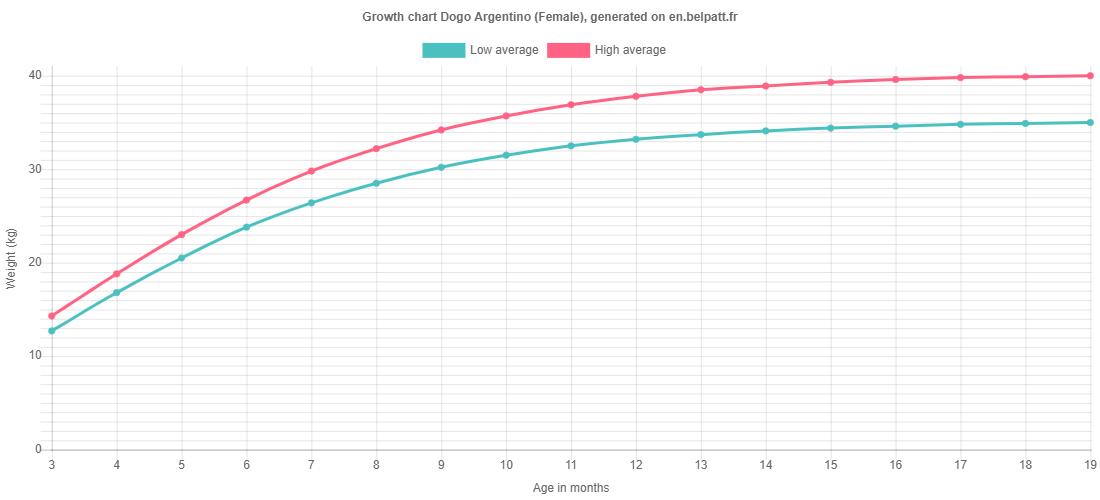 Growth chart Dogo Argentino female