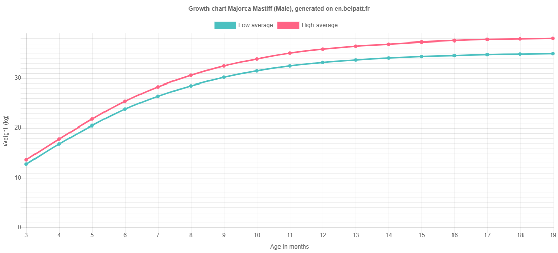 Growth chart Majorca Mastiff male