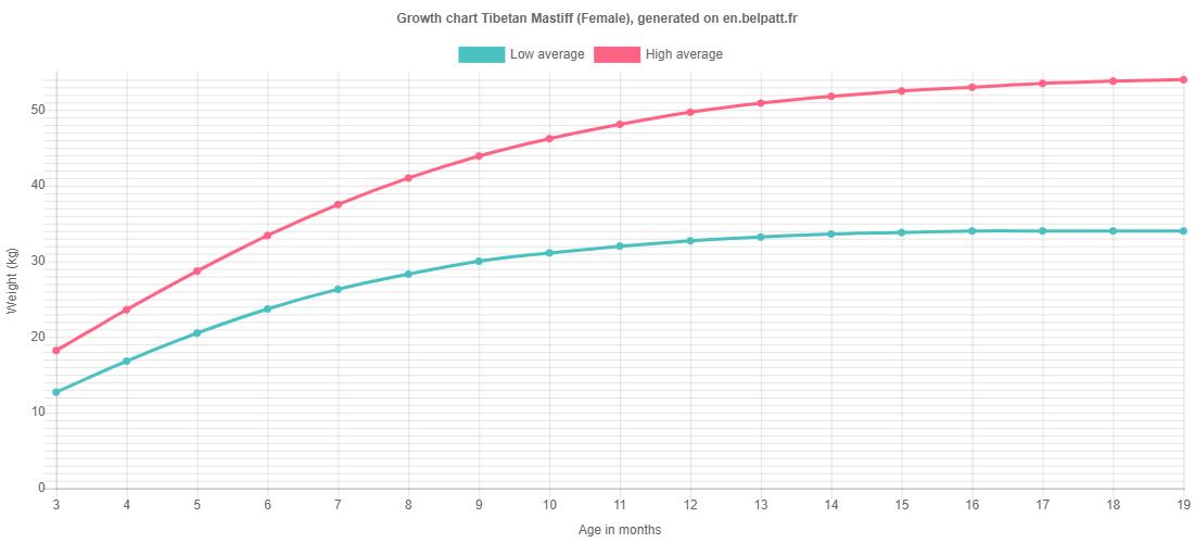 Growth chart Tibetan Mastiff female