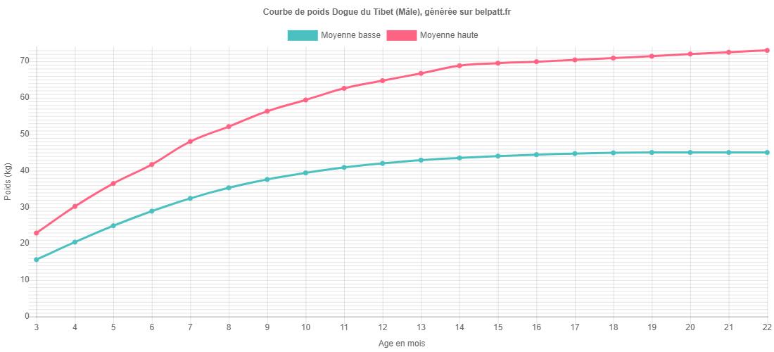 Courbe de croissance Dogue du Tibet male