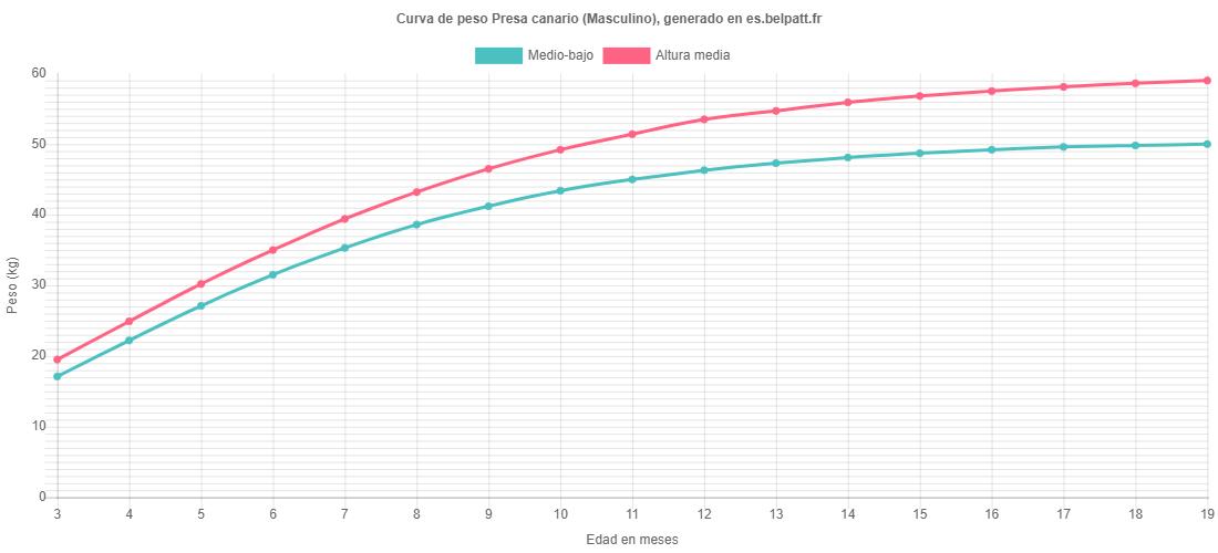 Curva de crecimiento Presa canario masculino