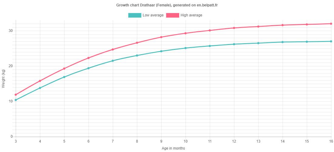 Growth chart Drathaar female
